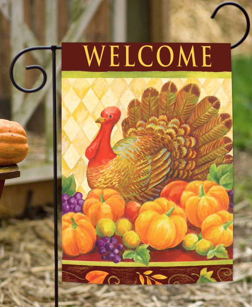 new toland turkey harlequin colorful thanksgiving bird welcome