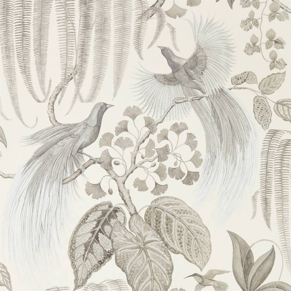 Sanderson Bird Of Paradise Wallpaper Linenproduct Code 216652 In 2020 Paradise Wallpaper Linen Wallpaper Birds Of Paradise