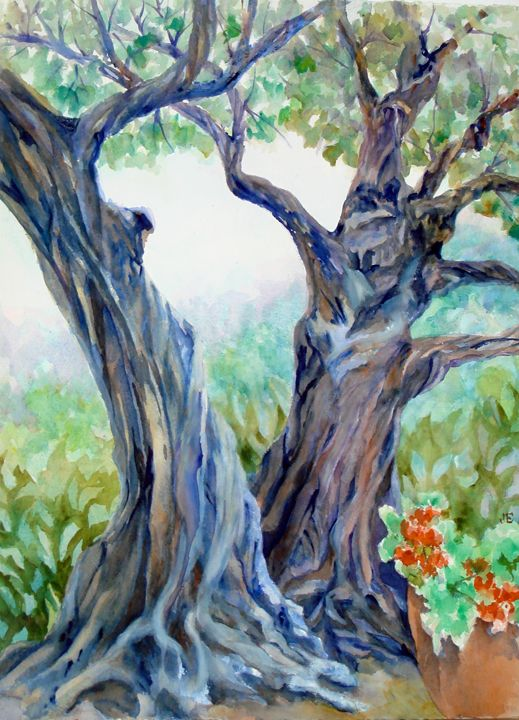 Olive Trees Copy Jpg 519 720 Olive Tree Painting Watercolor Trees