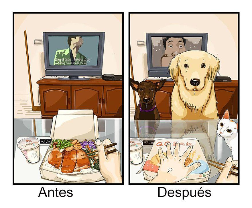 9 ilustraciones sublimes que muestran cómo es tu vida antes y después de tener un perro