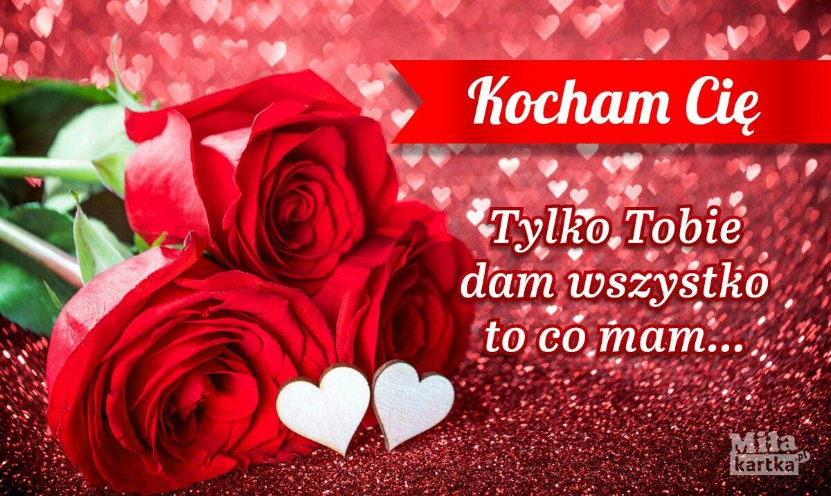 Pin By Hania Ziel On Kocham Cie Love Rose Flowers