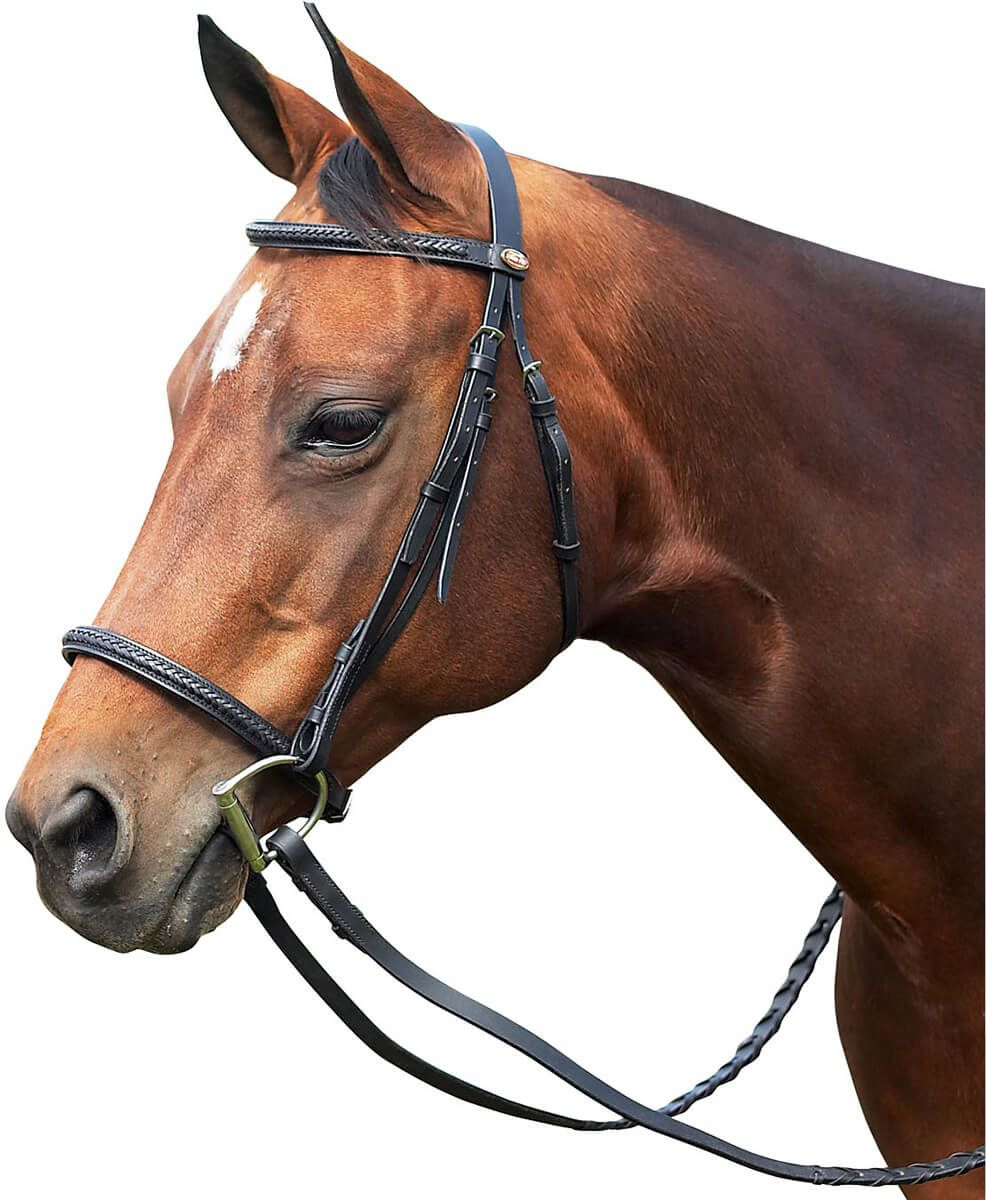 Braided leather bridle horses horse supplies english