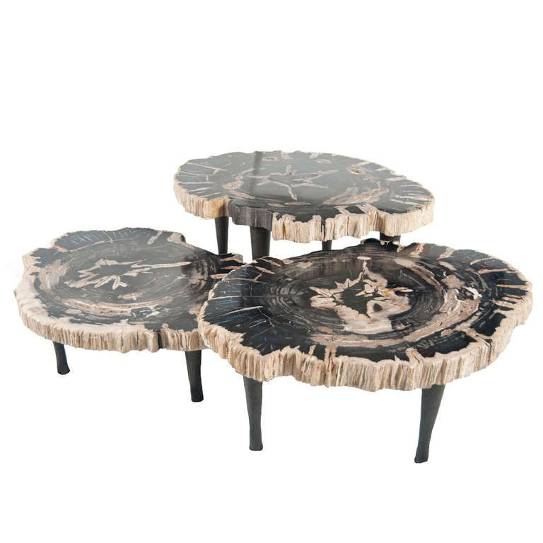 Cluster of petrified wood matching tables tables coffee for Petrified wood furniture for sale