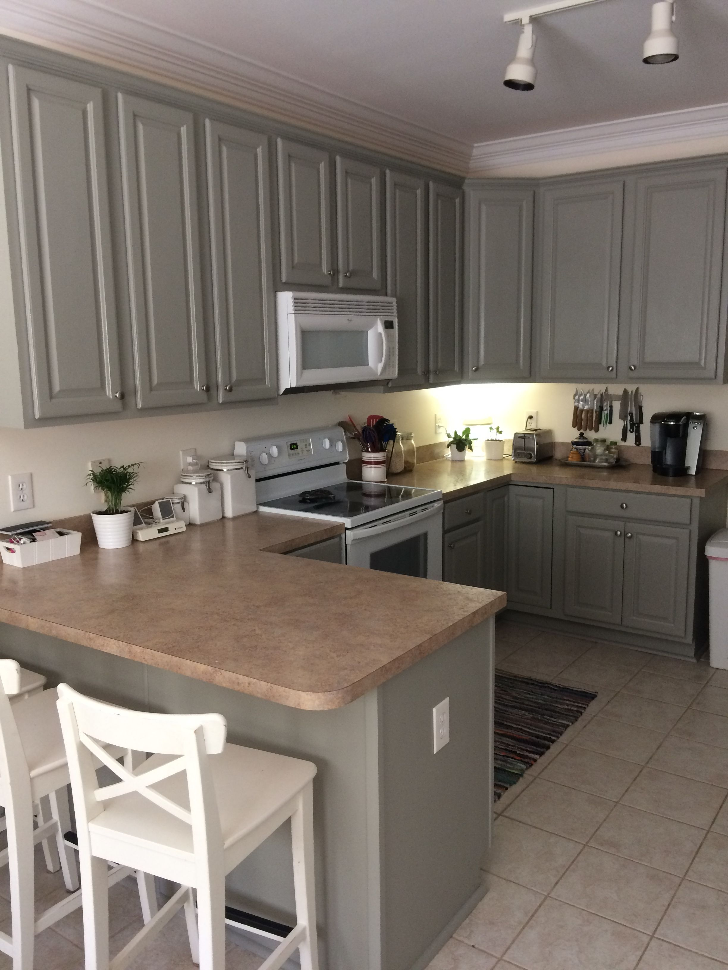 Kitchen cabinets painted Sherwin Williams Intellectual ...