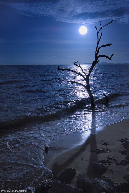 Moon Over The Ocean Is A Beautiful Thing At Night