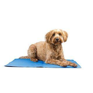 Furhaven Pupicicle Cooling Gel Mat Large Blue Pet Cooling Pad Pet Pads Blanket Dog Bed