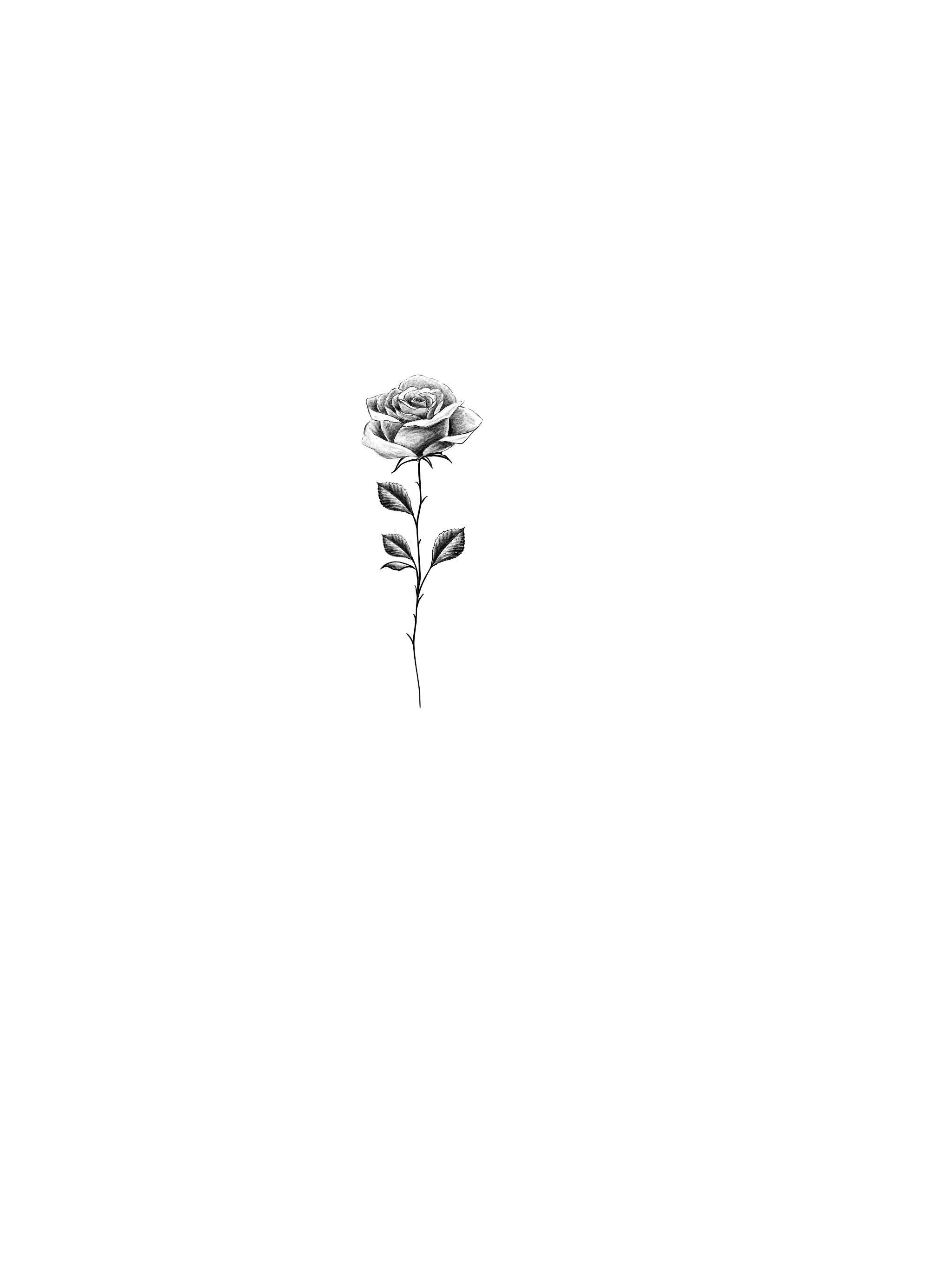 Pin By Sophia De Last On Tattoos Tattoos Flower Tattoo Designs Small Rose Tattoo