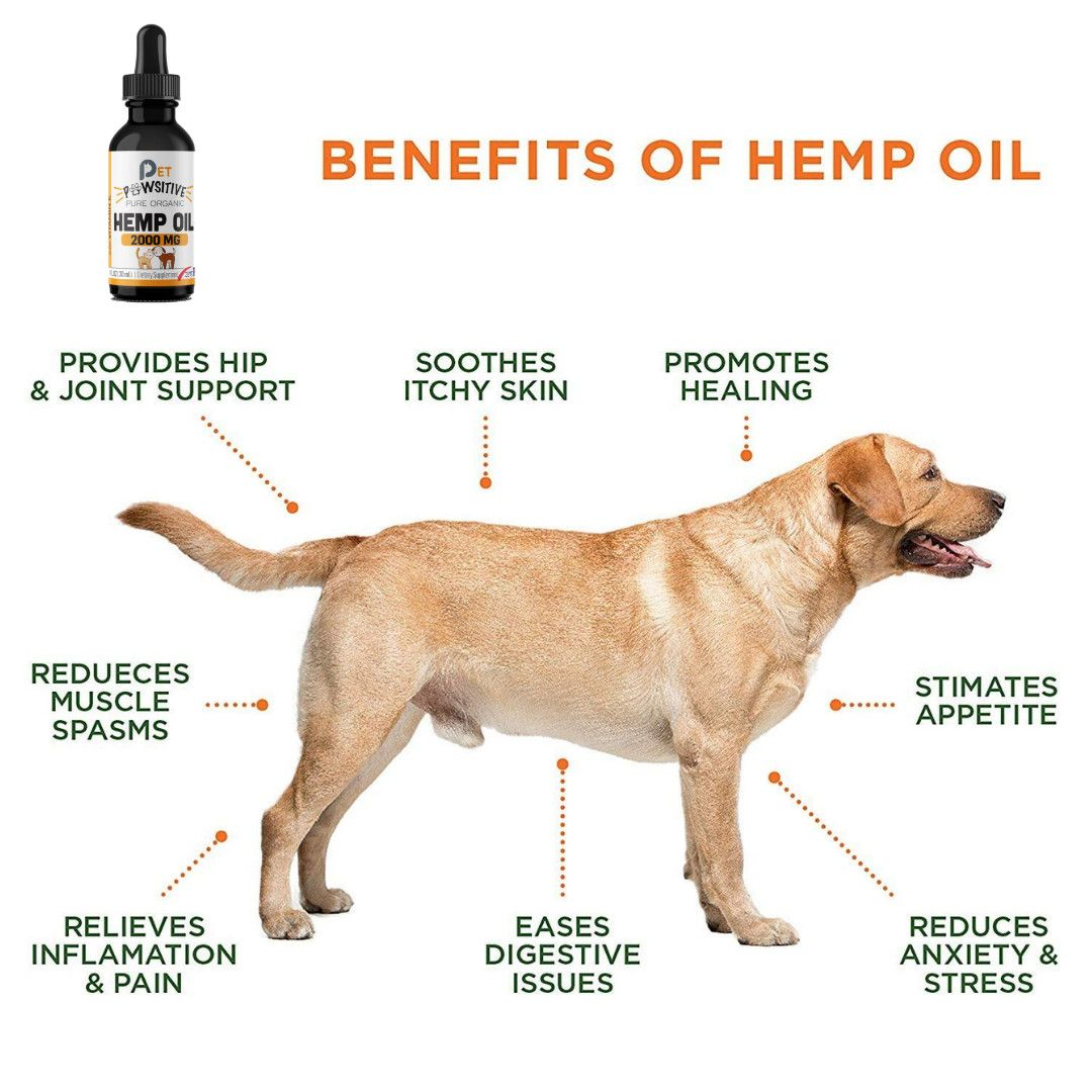 Pin by Pet Pawsitive on LOVE FOR PETS Hemp oil, Oils for