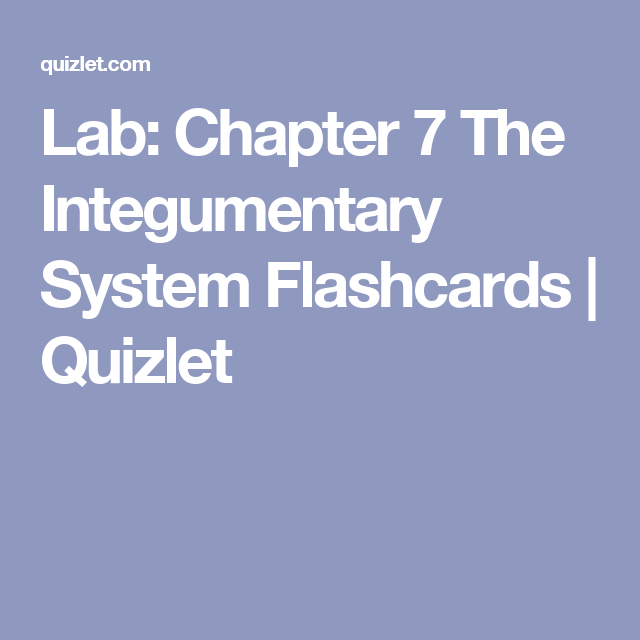 Lab: Chapter 7 The Integumentary System Flashcards | Quizlet | talk ...