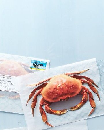 Creative: Eleven Cute Printables For Your Weekend  Deliver some summertime to your friends with this cute Crab Postcard via Martha Stewart