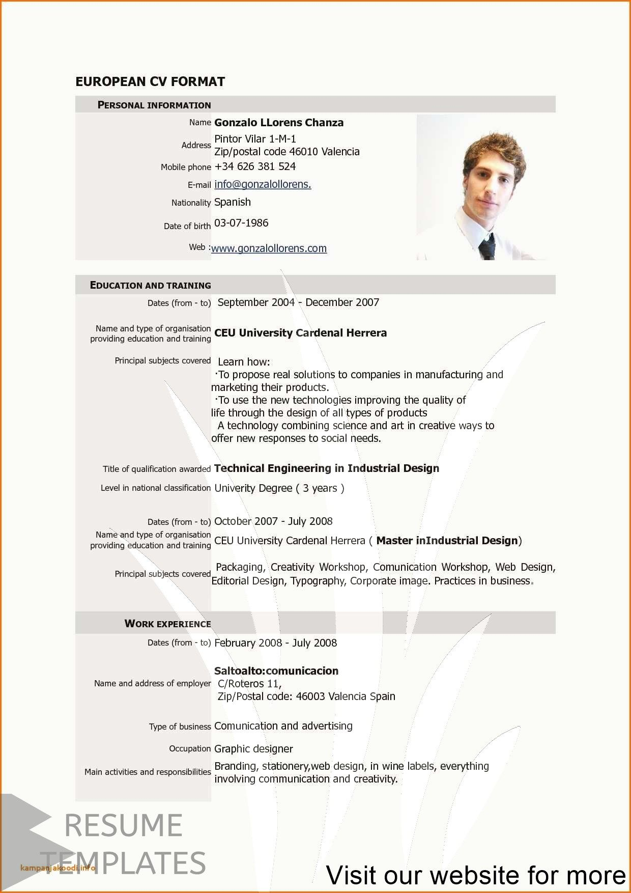 resume examples 2018 Professional in 2020 Resume