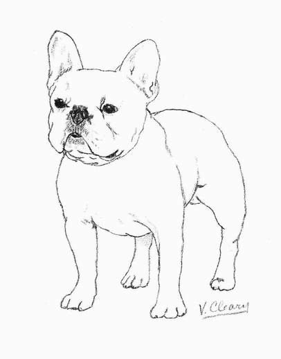 Image result for how to draw a simple french bulldog in