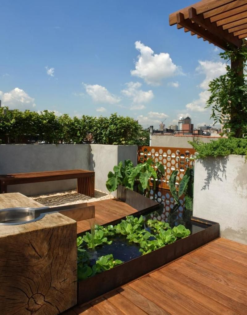 Garden Design, Roof Garden Picture With Green Plants: Roof Garden Solution  For Homes With