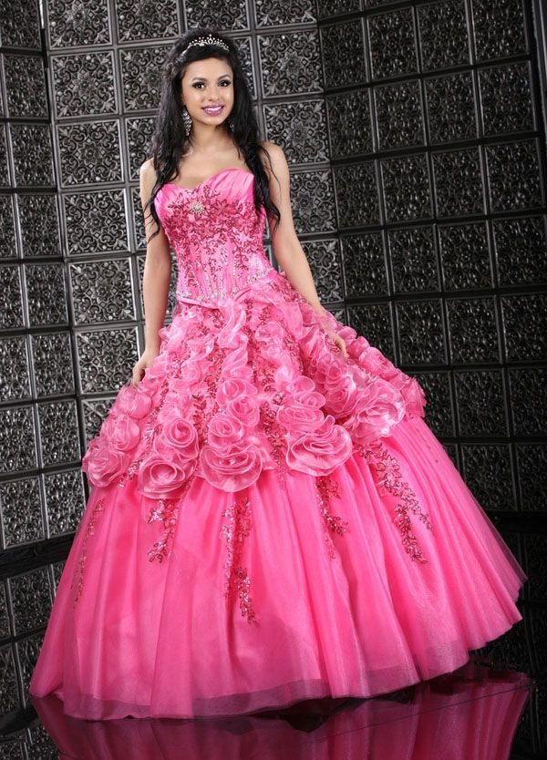 I love the roses on this pretty pink ball gown. Very fashionable ...