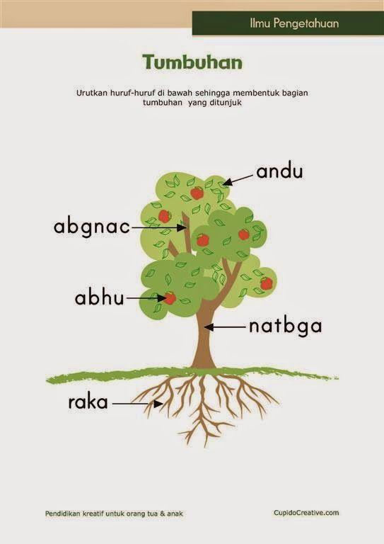 Belajar Anak Tumbuhan Belajar Pendidikan Anak