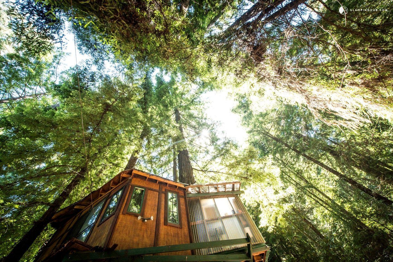 Glamping tree house in santa cruz mountains near monterey