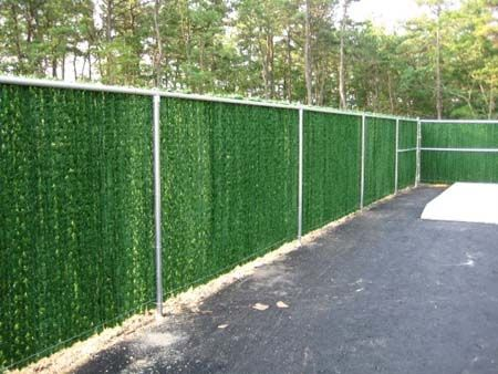 Evergreen Hedge Insert For Chain Link Fence Chain Link Fence