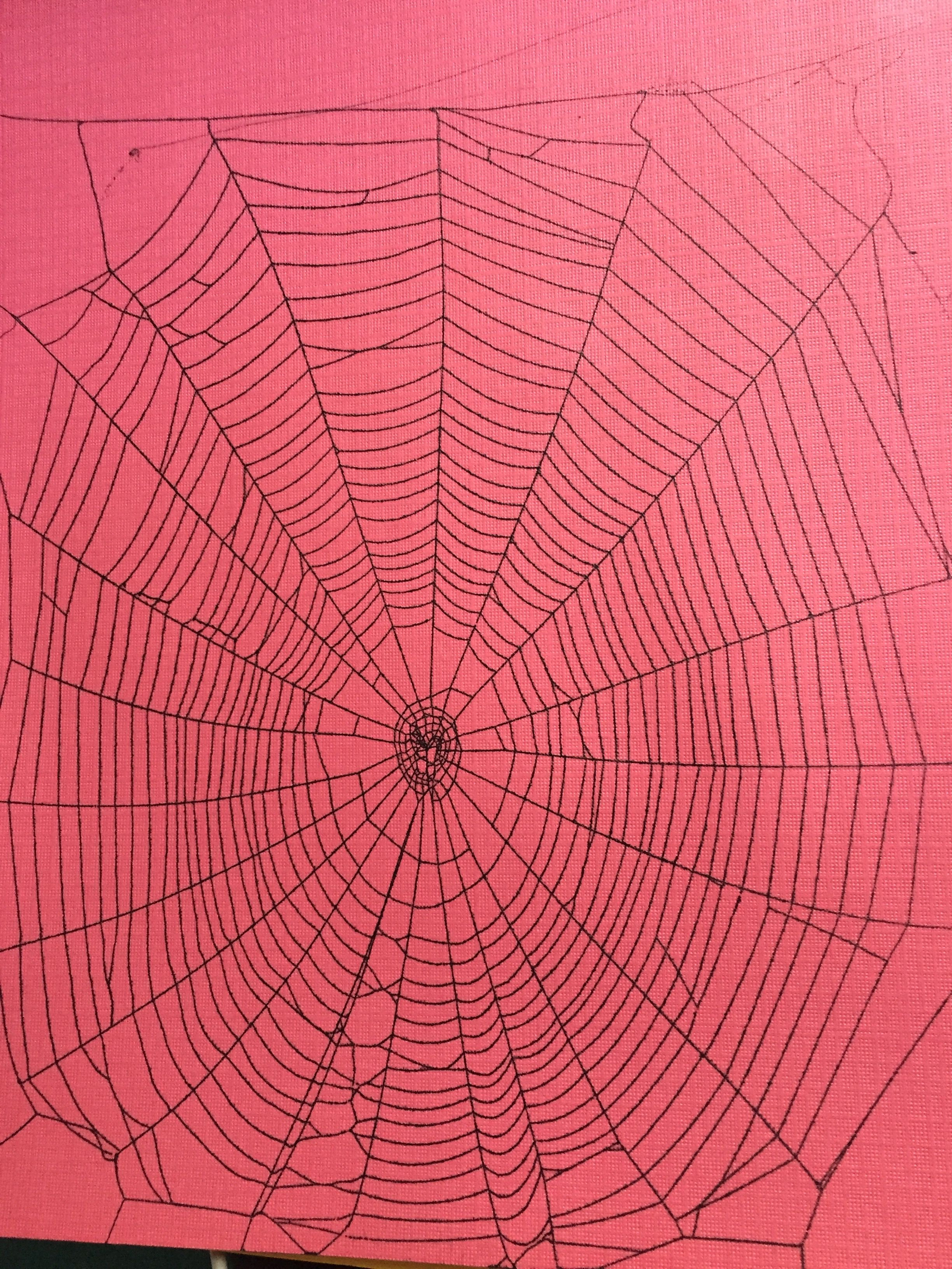 This Is A Real Spider Web Preserved On Paper Check Out My Etsy Page