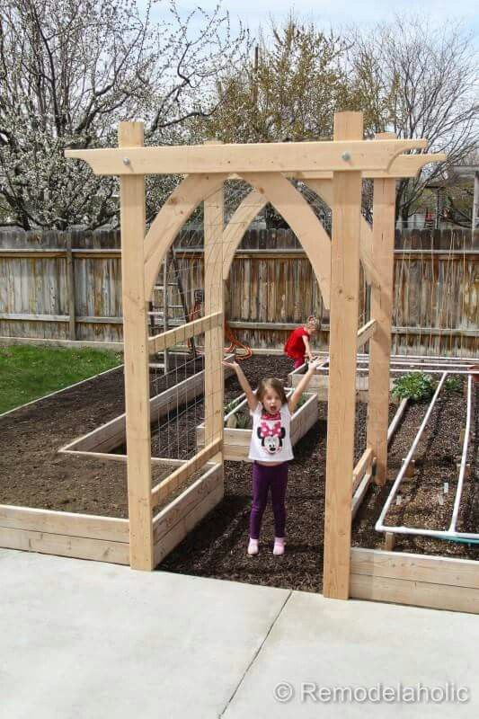 I would love this Garden bed! It could have multiple trellises, one for grapes, one for kiwis, then have the veggies in the garden beds and fruit trees off to the side. Perfection!