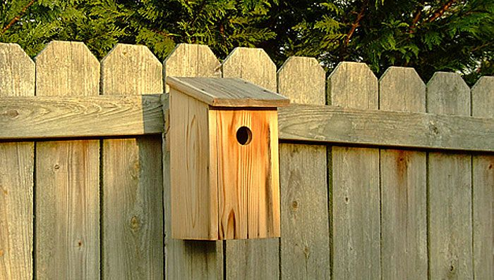 17 Best 1000 images about Bluebird House Plans on Pinterest Hand