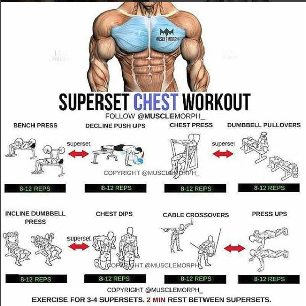 Chest training Training exercises, Related post and Exercises - fresh arnold blueprint training review