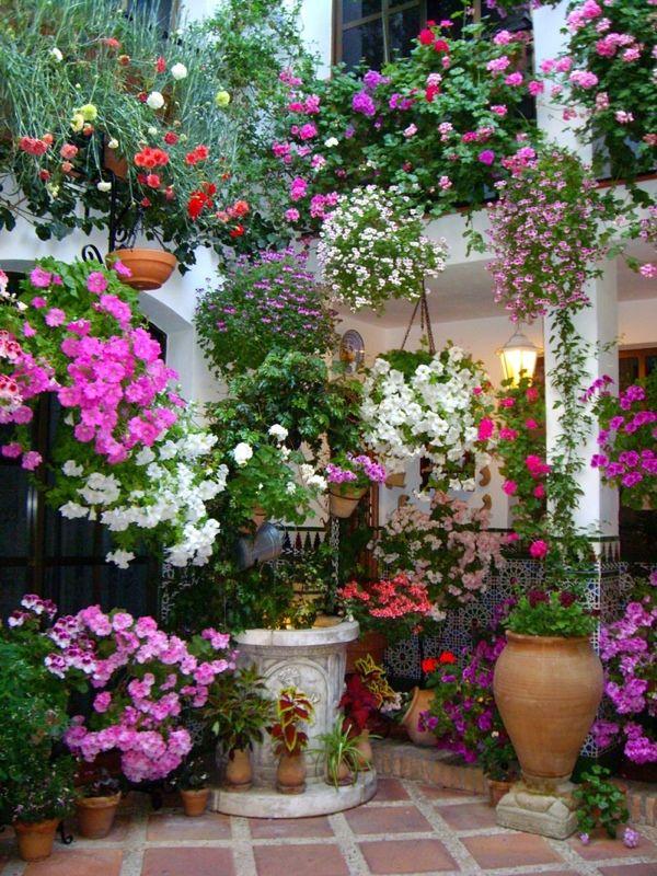 Patio espagnol le jardin de mes r ves pinterest for Jardin en espagnol