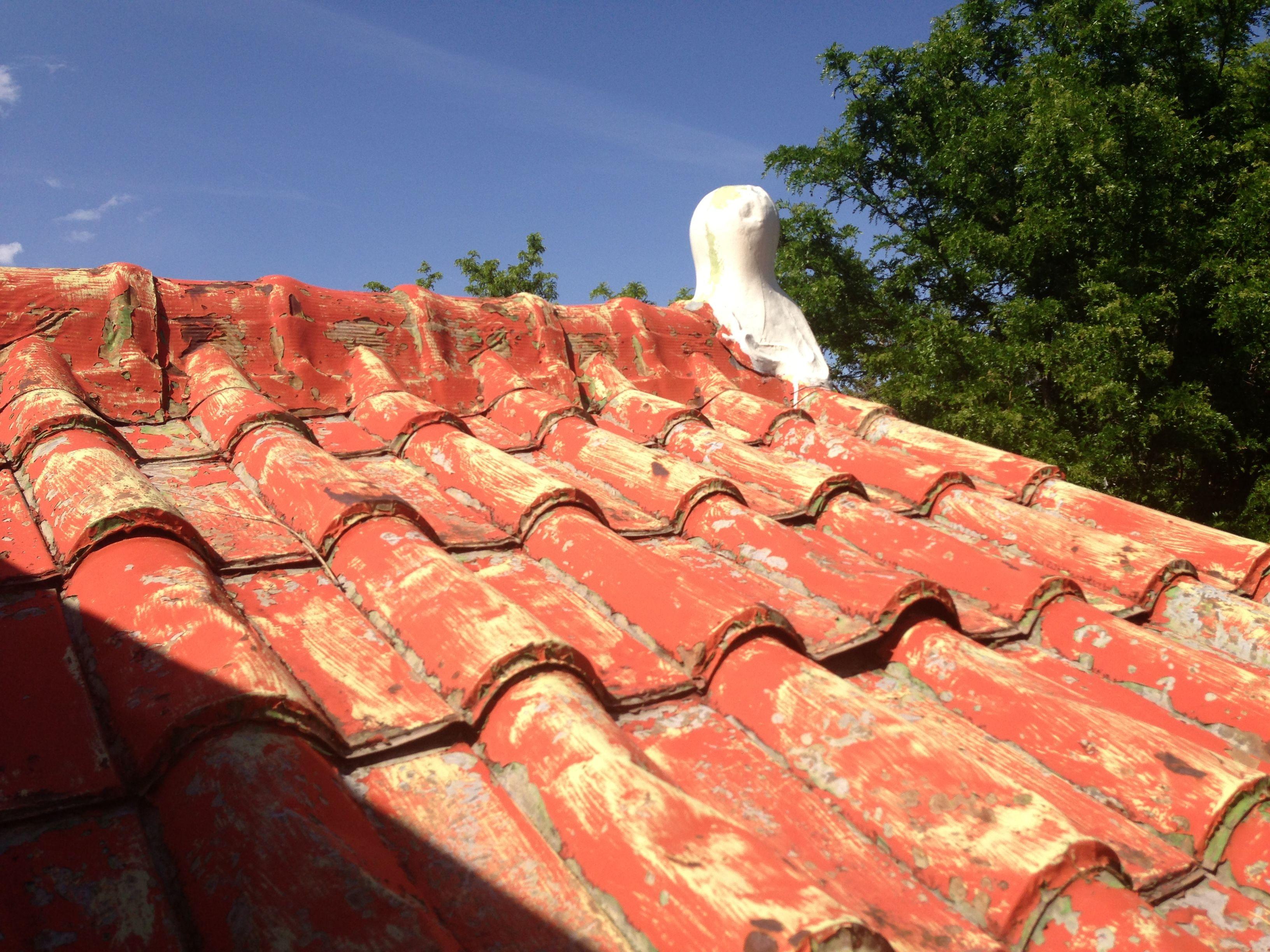 Stamped Metal Roof 109 Years Old 1717 Race St Denver Co Historic Buildings Metal Roof Home Styles