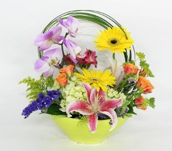 Over the rainbow bell flowers custom designs pinterest silver order over the rainbow from bell flowers your local silver spring florist send over the rainbow for fresh and fast flower delivery throughout silver mightylinksfo