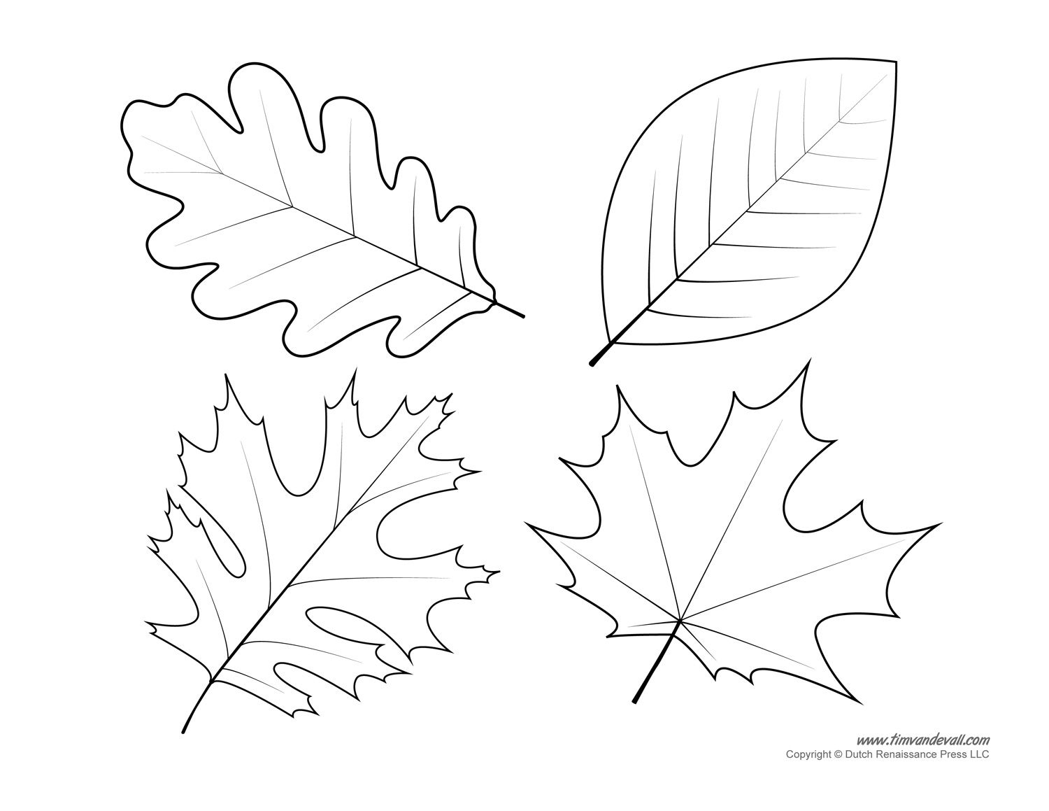Leaf Templates Coloring Pages For Kids Printables