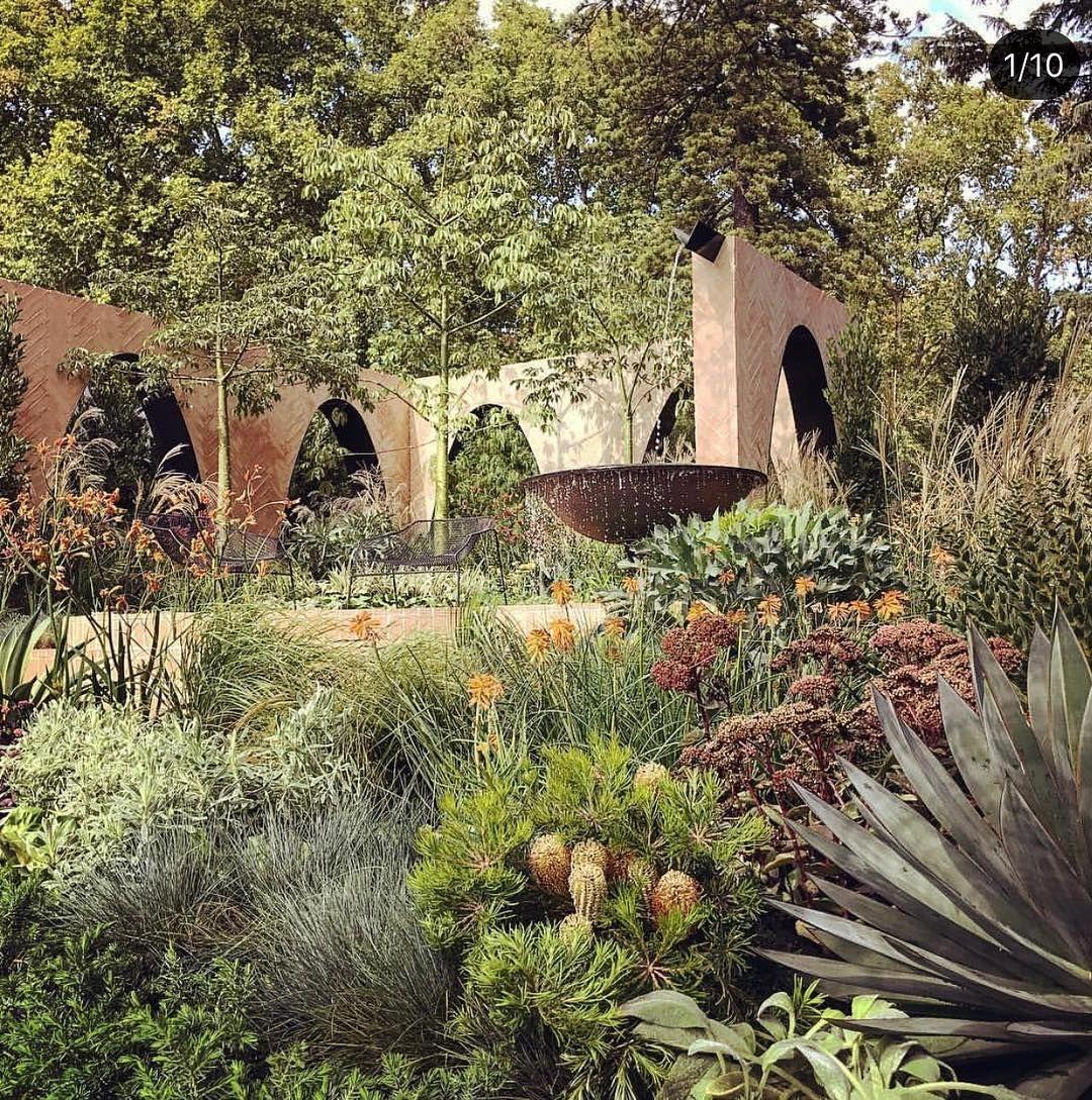 HEDGE Garden Design & Nursery on Instagram ...