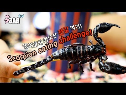 [3BAGtv] 카오산의 전갈 먹기 도전(Khaosan & Scorpion)