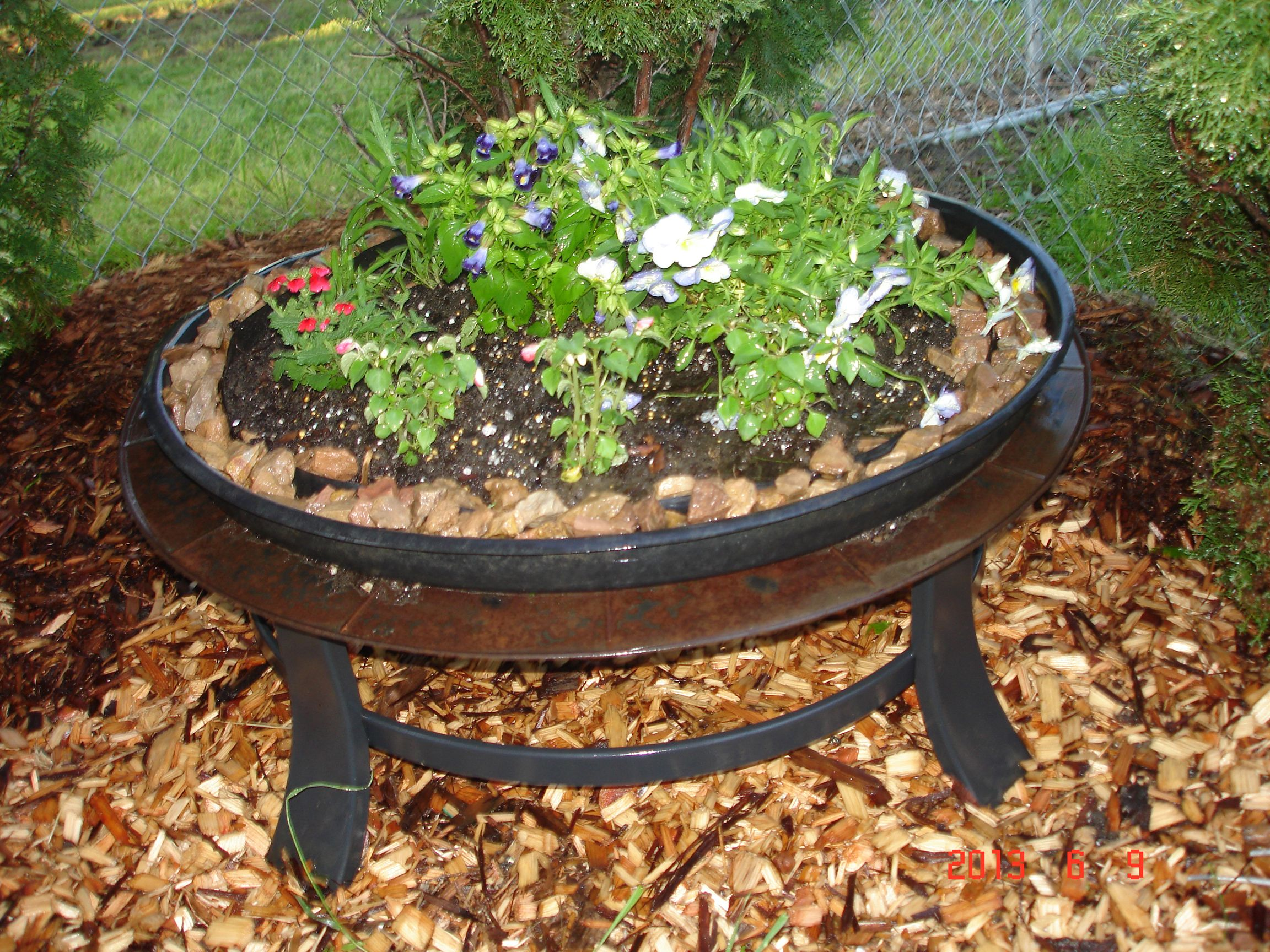 Old Fire pit I turned into a planter.   Flowers ...