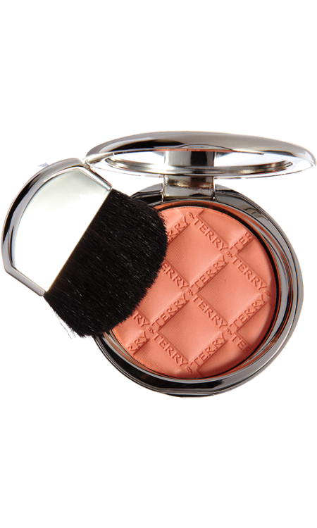 By Terry Blush Terrybly, one of the best blushes ever used, very pricy but amazing
