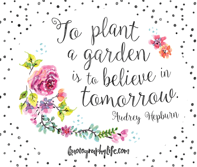 Pretty As A Flower Quotes: To Plant A Garden Is To Believe In Tomorrow