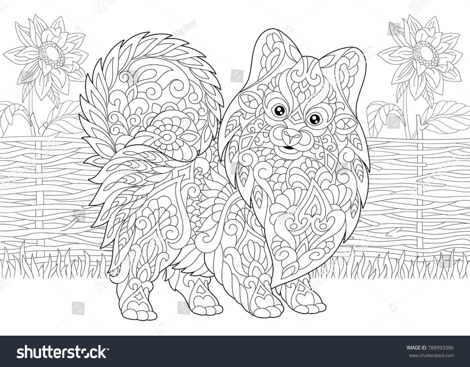 Coloring Page. Adult Coloring Book. Pomeranian spitz, dog symbol of ...