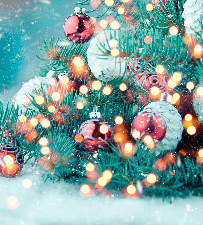 Luces de Navidad Ventas en Westwing nadal Pinterest - Luces De Navidad