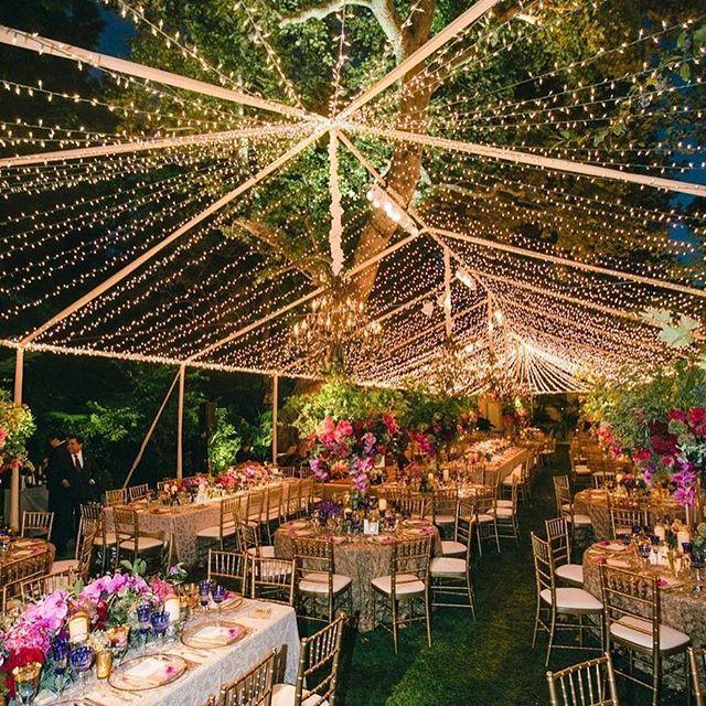 Outdoor Wedding Ceremony Whitby: Wedding Lights, Backyard Wedding
