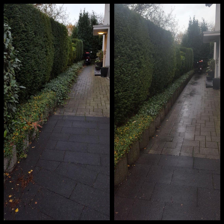 Heckenschnitt Und Beetpflege Im Efeukampf Efeu Hecke Schneiden Garten Vorgarten Beet Gartenpflege Leverkusen Kol Garden Inspiration Garden Sidewalk