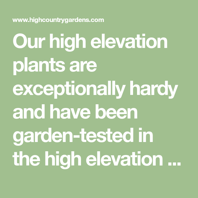 Altitude Of Santa Fe Nm >> Our High Elevation Plants Are Exceptionally Hardy And Have