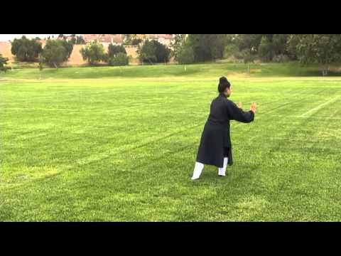 Wudang Five Animal Qi Gong (Turtle) 武當五行氣功(龜