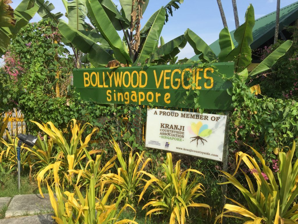 Escape To Nature In Singapore Bollywood Veggies Singapore Travel Bollywood Singapore