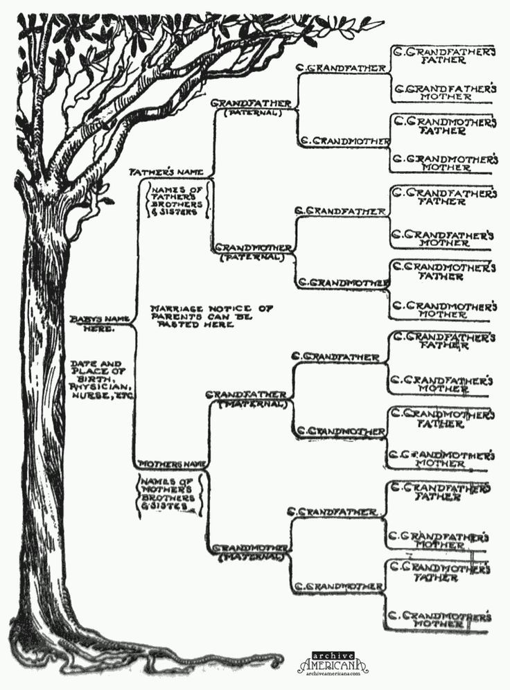 More than 100 family tree templates you can download and print for ...