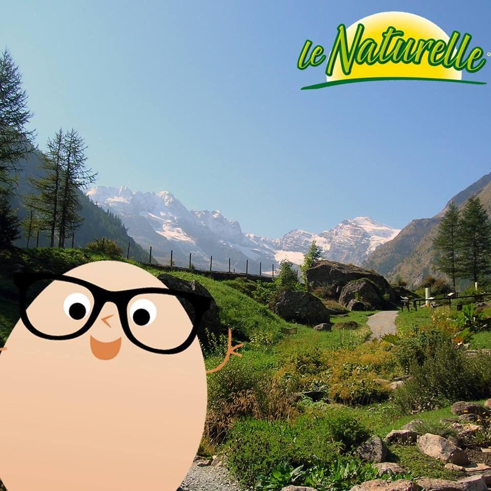 #EggSelfie Il nostro ovetto si concede un po' di meritato riposo e qualche passeggiata nei boschi. E voi dove passerete il weekend, al mare o in montagna?