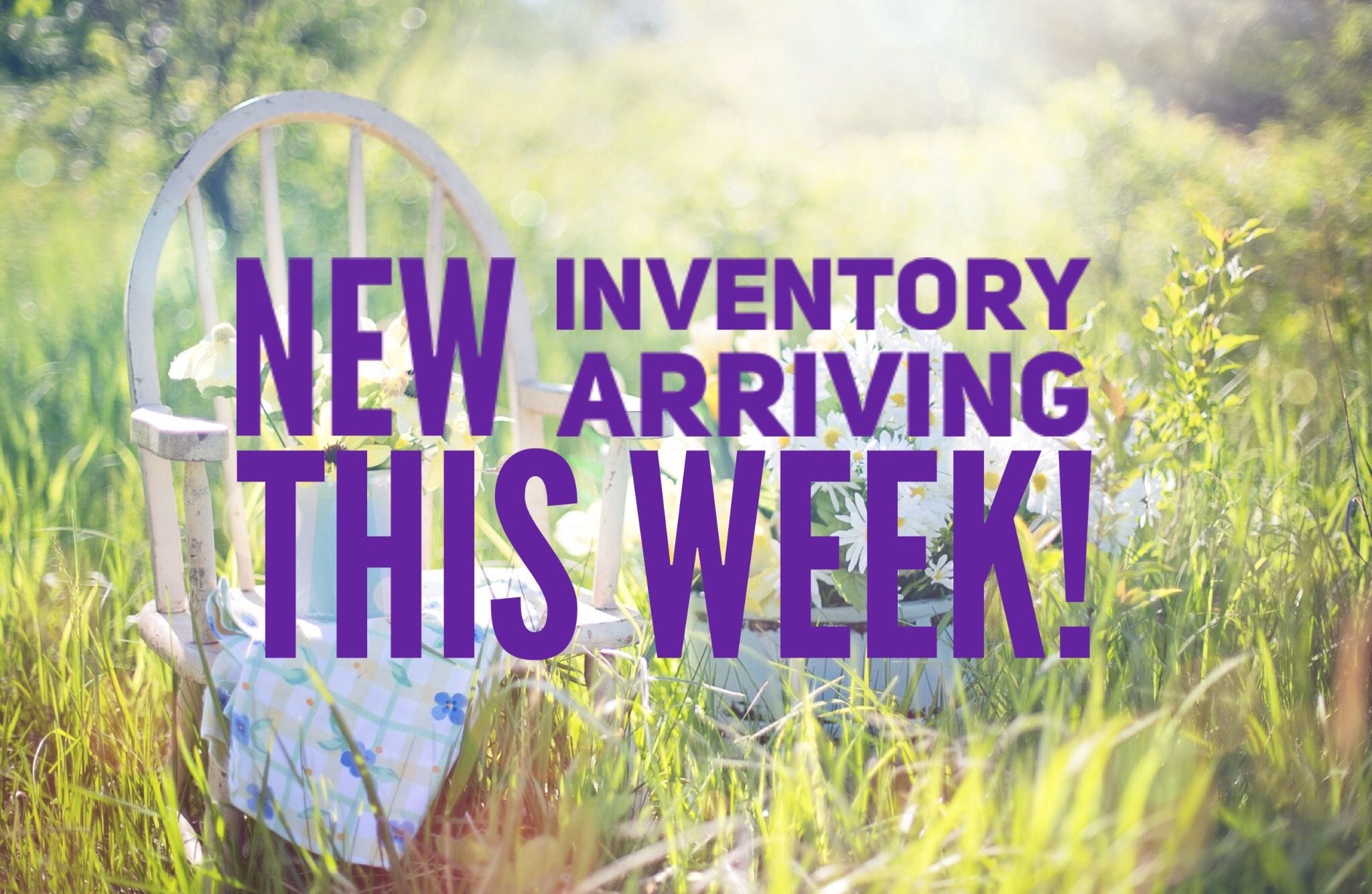 New Dotdotsmile Inventory Arrives Weekly