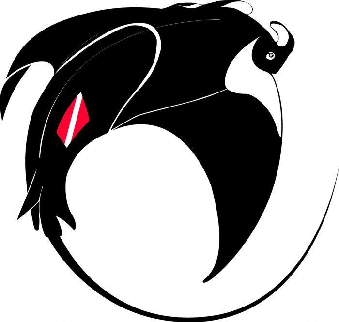 Manta Ray Tattoo Google Search Dive Designs