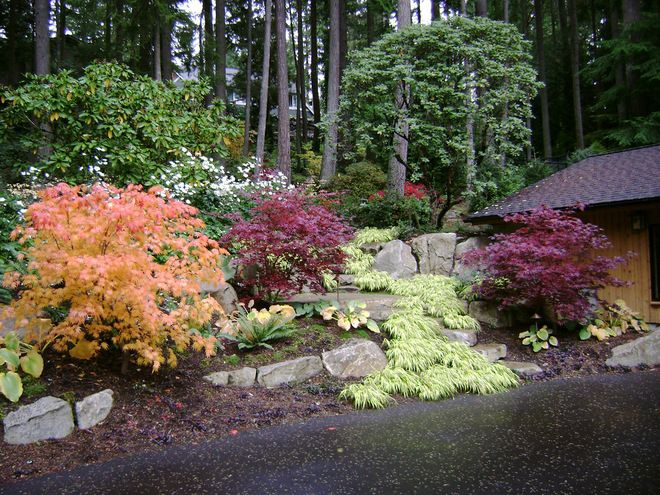 Pacific Northwest Landscaping Ideas Traditional Landscape By