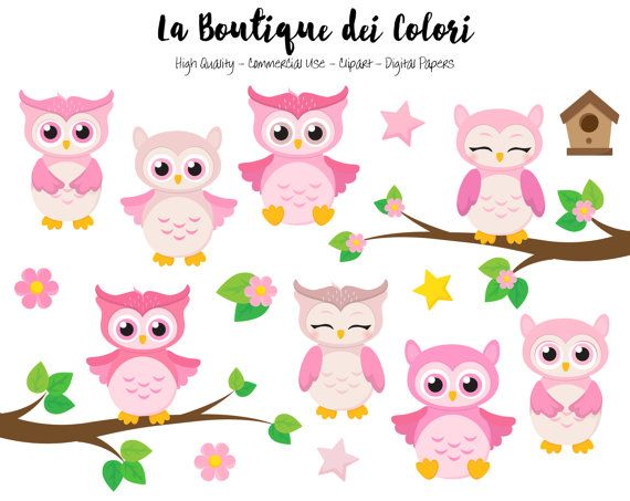 Pink Baby Owls Clipart Cute Graphics Png Birds Animals Its A