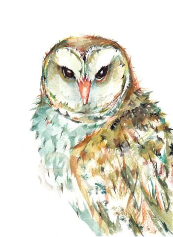 LOVE! 50 OFF Barn OWL ORiGINAL mixed media painting 5x7 by EcoProduct, $20.00
