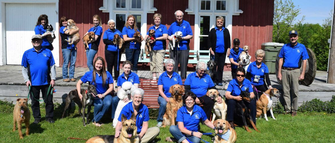 Fox Valley Therapy Dog Club Making A Difference One Paw At A