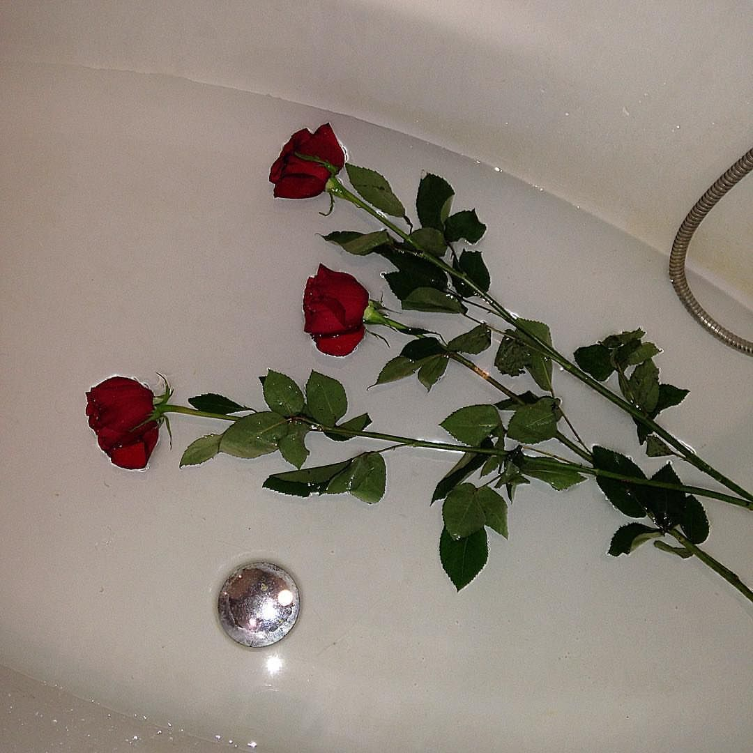 Flower Roses Pinterest: Pin By Jennifer Underwood On ART